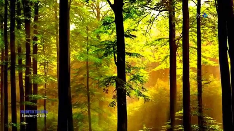 Symphony of light FREDERIC DELARUE