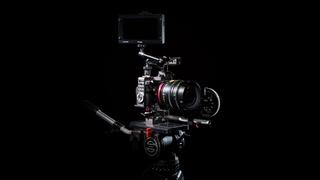 Lomo illumina 50mm, Carl Zeiss ZE 50mm, Samyang 50mm test