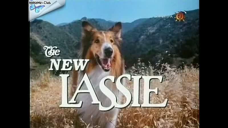 Новые приключения Лесси (1989–1991) серии 1-6