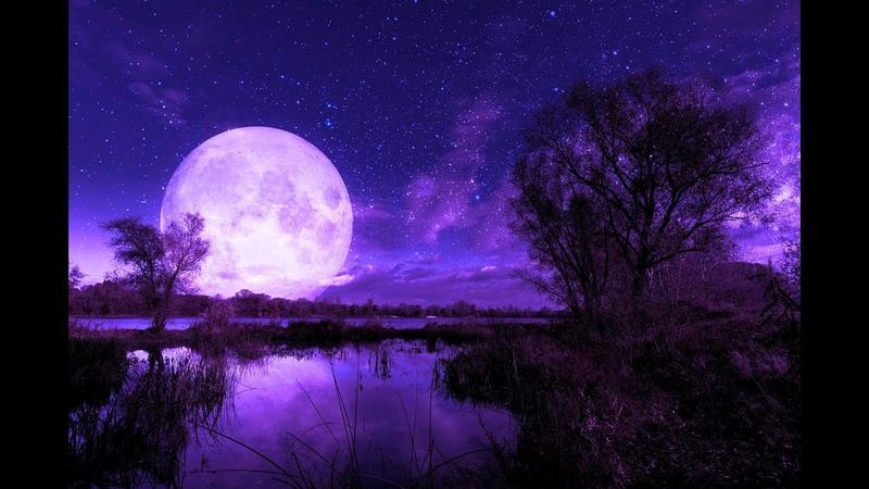 432Hz Deep Sleep Music ➤ Tranquil Sleep Fall Asleep Fast and Easy Miracle Healing Tone