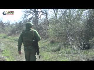 Позиции ДНР были обстреляны из артиллерии перед выборами на Украине.