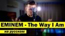 EMINEM - THE WAY I AM (Кавер НА РУССКОМ) | Женя Hawk. Доходы и расходы канала.