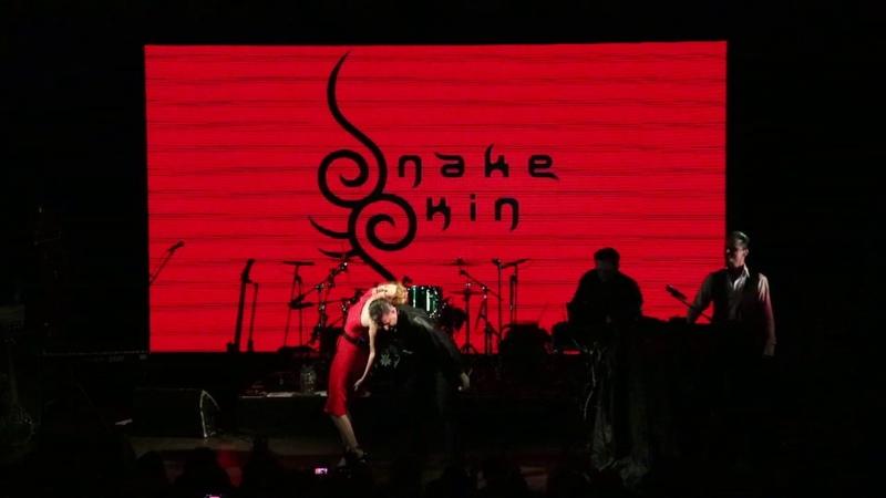 SnakeSkin Live @ Kosmonavt Saint Petersburg 02 03 2019