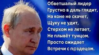 ВОВА - БЕДОНОСЕЦ! Путинским дружкам КРУТЯТ ЯЙЦА