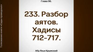 233. Сады Праведных. Глава 96. Разбор аятов. Хадисы 712, 713, 714, 715, 716, 717    Абу Яхья