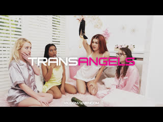 TRANSANGELS: Bring your Pajam'Ass