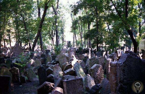 Старое европейское кладбище в Праге.