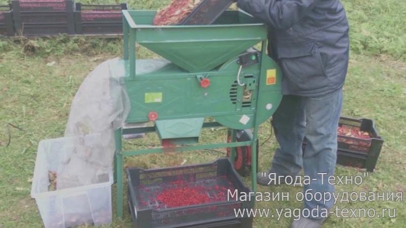 Веялка для очистки ягод Брус 500 Быстрая очистка Брусники Ягода Техно