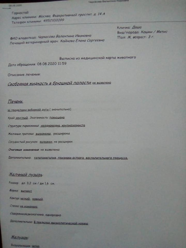 6N5IKpdjox4.jpg