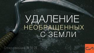 Откровение 14:14-20. Удаление необращенных с земли | Андрей Вовк | Слово Истины