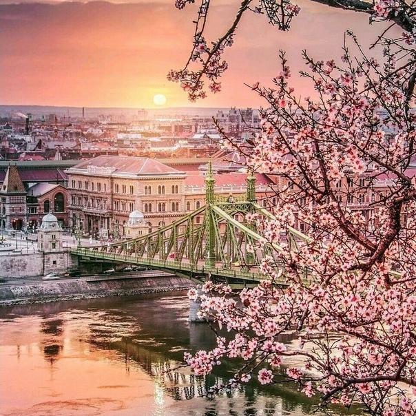 ПРЯМЫЕ рейсы в Будапешт за 3700 рублей туда-обратно из Москвы