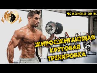 +Жиросжигающая Круговая Тренировка от Абсолютного Чемпиона Arnold Classic Андрея Шмидта