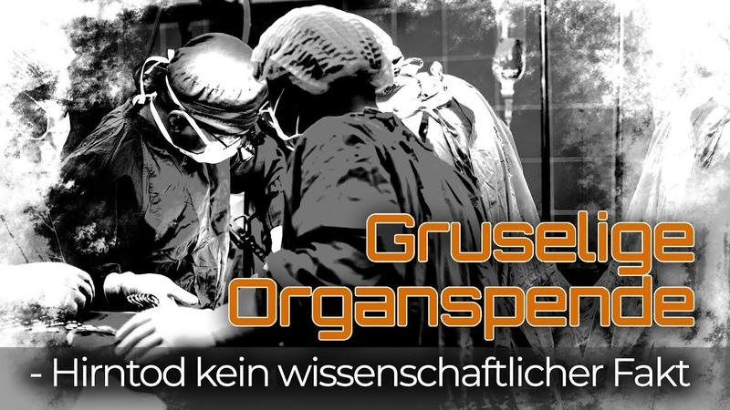 Gruselige Organspende Hirntod kein wissenschaftlicher Fakt 05 Mai 2015 16309