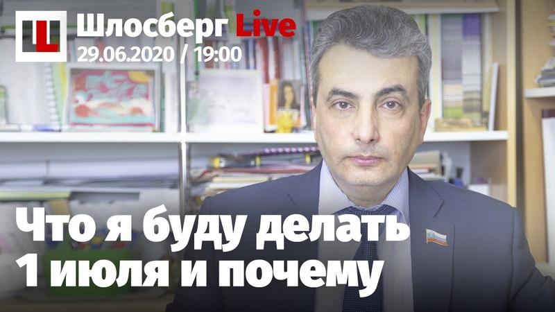 Карнавал для Путина Голосование позора Конституция здесь не ночевала Мой голос против Шлосберг