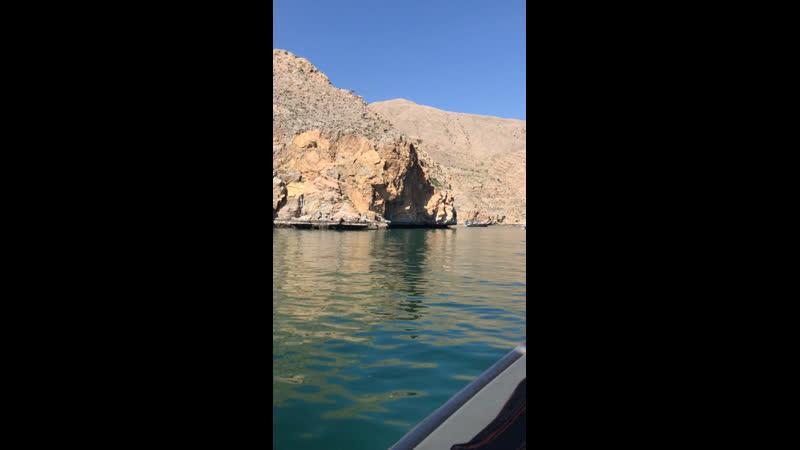 Подплыли за креветочками в Хайфу