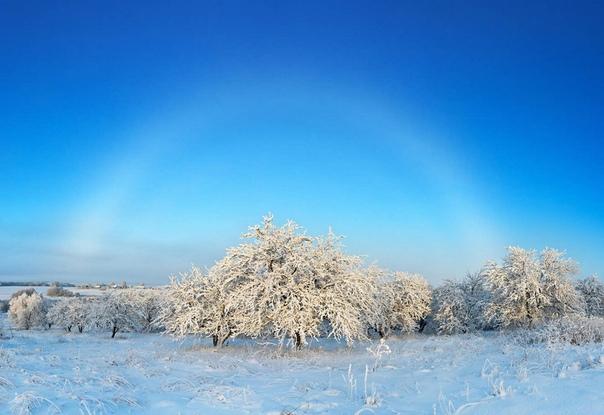 Белая туманная дуга над зимним садом. Карелия, Россия.