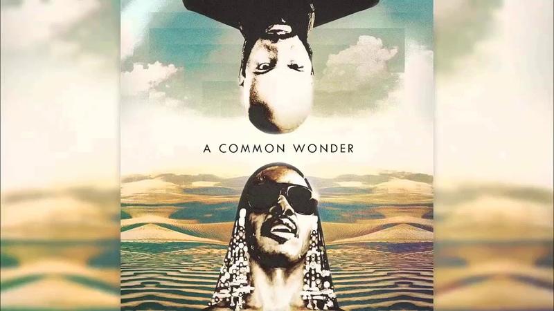 Common Stevie Wonder A Common Wonder Full Album HD