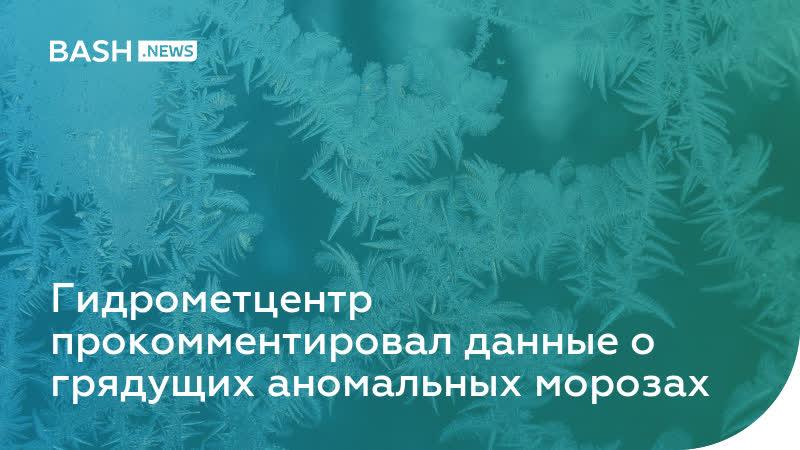 Гидрометцентр прокомментировал данные о грядущих аномальных морозах