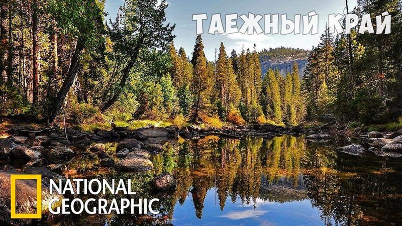 Дикая природа России Таёжный край Фильм 5 из 6 National Geographic
