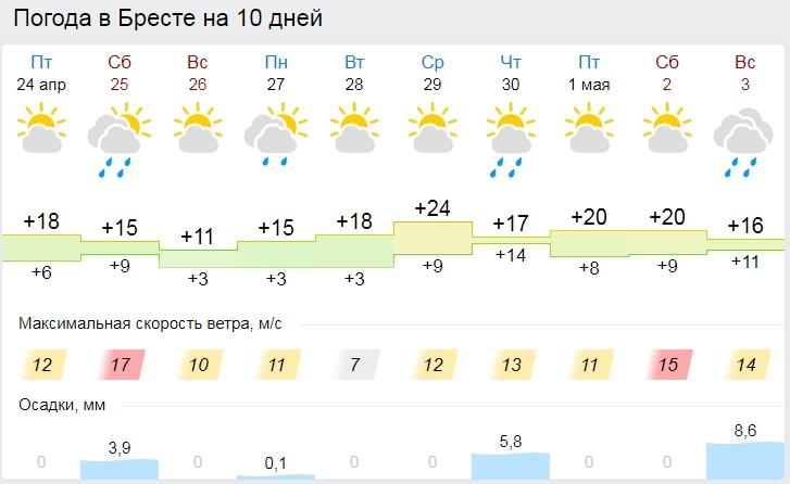 Со вторника будет лето. Все о погоде в Бресте в длинные выходные