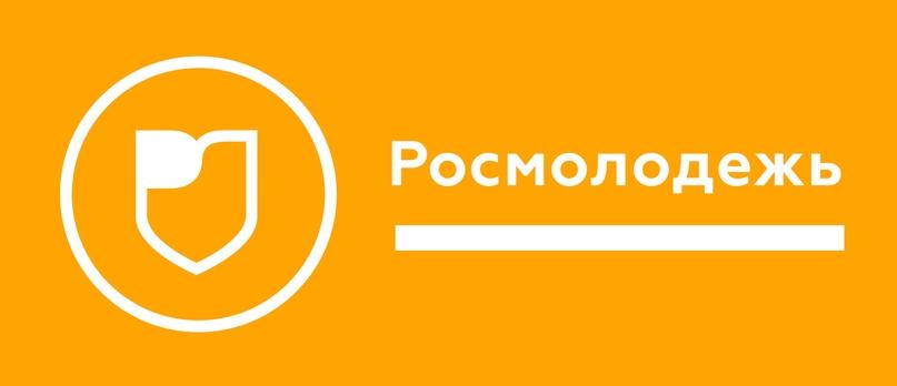 Грантовый конкурс Росмолодежи, изображение №1