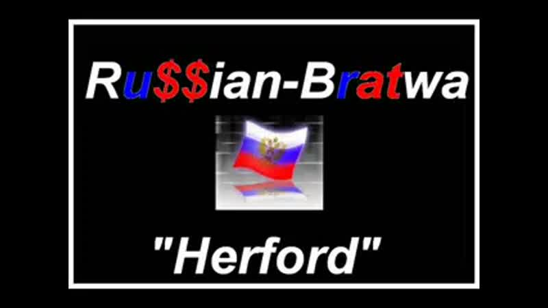 Herfordskie russaki