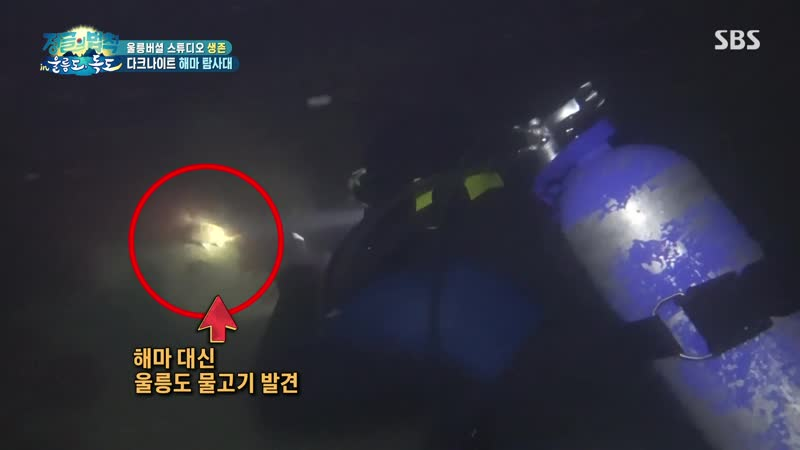 VIDEO 210109 Chanyeol @ Law Of The Jungle Ulleungdo Dokdo