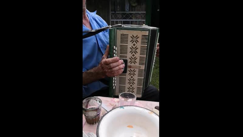 Дед Витя и его гармонь