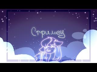 Стрим с вебкой (новогодний) ✧ ˖ °