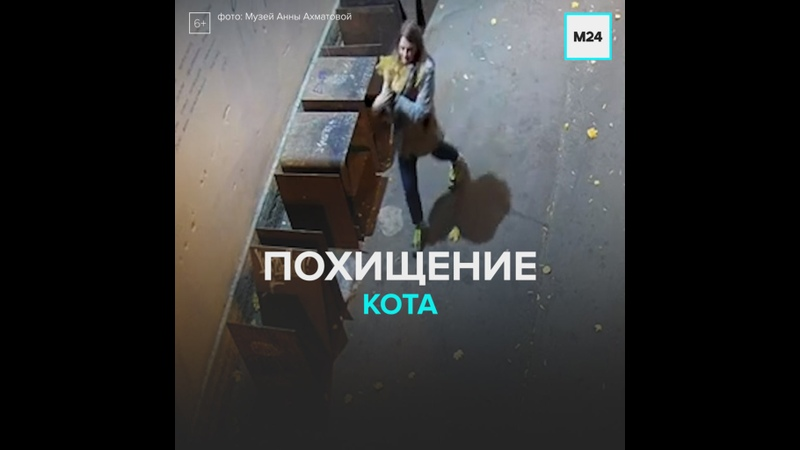 Похищение кота Москва 24