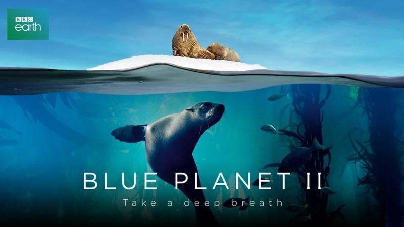 Голубая планета 2 3 серия Коралловые Рифы Blue Planet II 2017