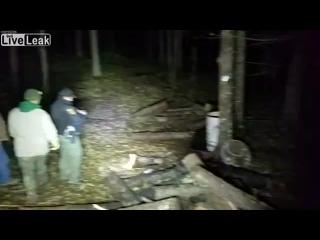 C N N( mass-media & video)📹 - Bear Cubs Head Unstuck After Two Days