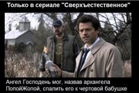 фото из альбома Александра Шелестова №16