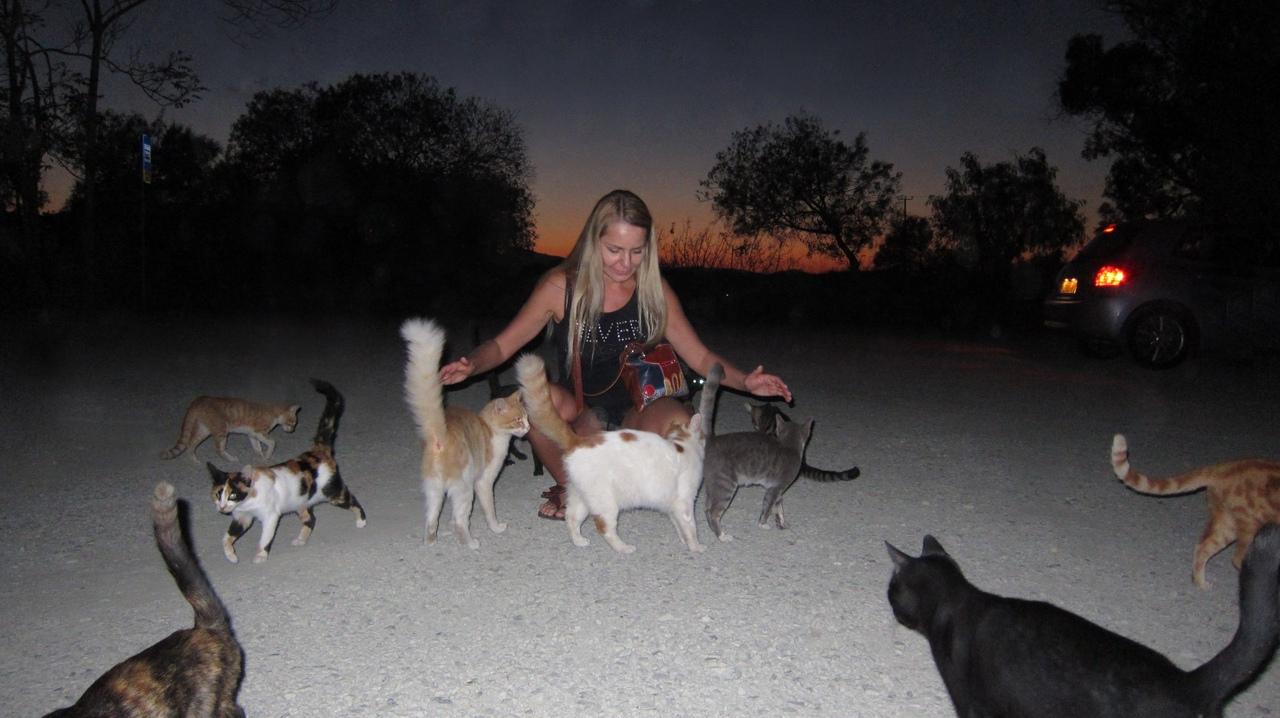 photo from album of Svetlana Lavrova №11