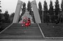 Фотоальбом Светланы Акуловой