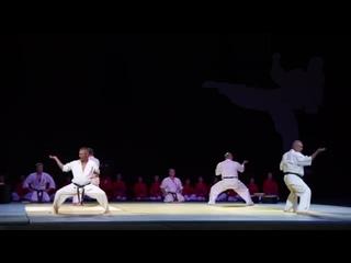 МБИ 182 | Показательные выступления | Открытие фестиваля боевых искусств ТАФИСА в Ульяновске.