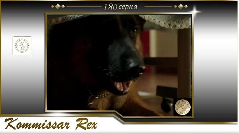 Komissar Rex 16x08 Комиссар Рекс 180 серия