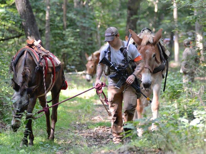 Кандидат в ряды US SF ведет мулов на плацдарм, где на них нагрузят рюкзаки, для движения на большие дистанции. Фото сделано 7 июня 2019 года при прохождении кандидатами заключительного этапа обучения известного как «Robin Sage» и проводятся в центральной части Северной Каролины. Фотограф Армии США К. Кассенс (K. Kassens)