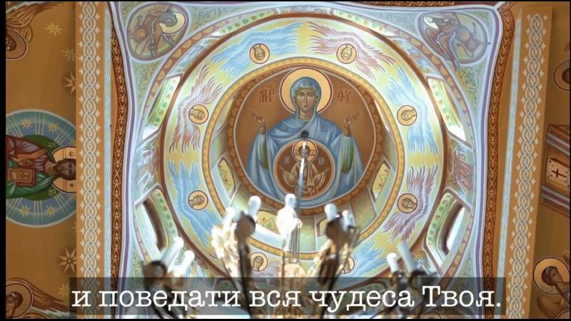 Видео от Татьяны Яковлевой