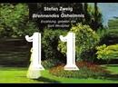 11. Der Überfall нападение/Brennendes Geheimnis/S. Zweig