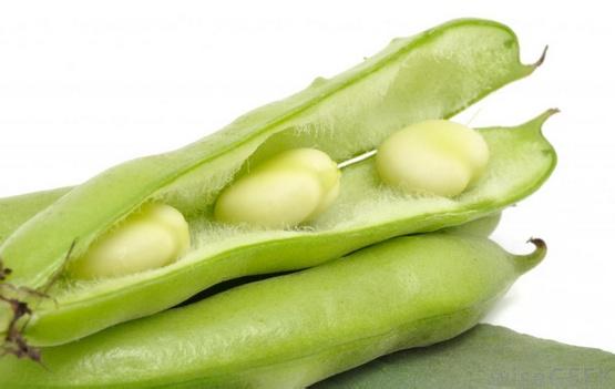 Употребление свежих бобовых может помочь при боли при эндометриозе.