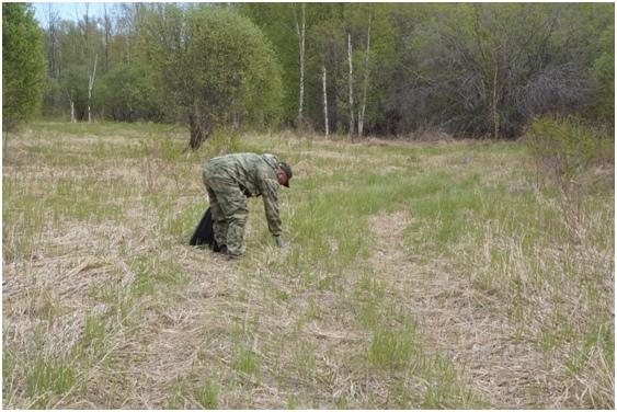 Участие в акции «Чистый берег» государственного природного комплексного заказника «Сургутский»., изображение №4