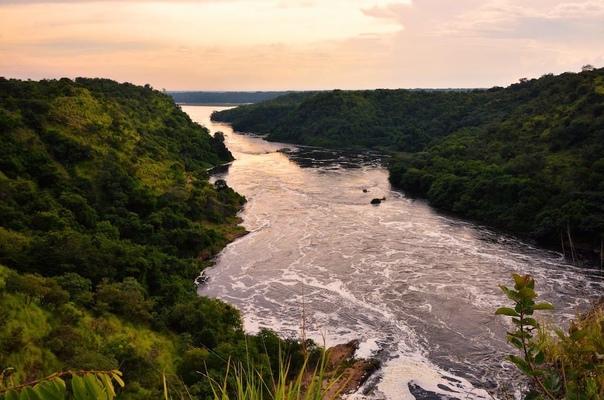 Гидрометцентр назвал самые грязные реки Петербурга и Лено...