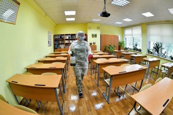 67 классов из 37 школ Петербурга перевели на удалё...