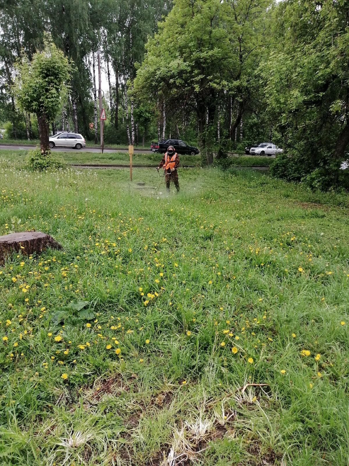 Покос травы Большева 17