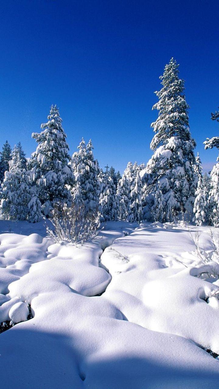 """#Книжныйгид#зима#читаемклассиков """"Как-то"""
