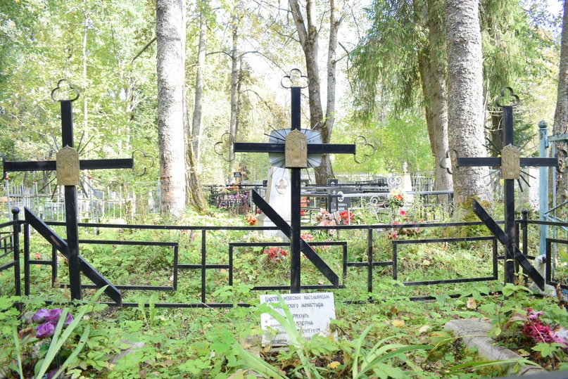 д.Малая Новинка, кладбище.