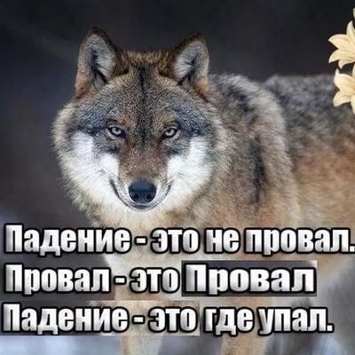 Виталик Слушев, Краснодар