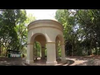 Virtual walk in Peradeniya Royal Botanical Gardens   Kandy - Sri Lanka