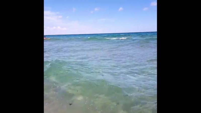 Черноеморе побережьеболгарии пляж Шкорпиловци sea blaksea schwarzemeer wasser strand beach Bulgaria localguides ter